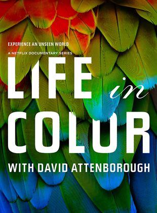 Das Leben in Farbe mit David Attenborough