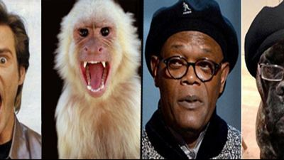 Hollywoodstars und ihre tierischen Doppelgänger