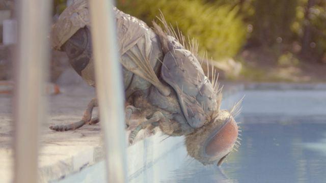 Der wohl abgefahrenste Trailer des Jahres: Zwei Kumpels zähmen eine gigantische Fliege!