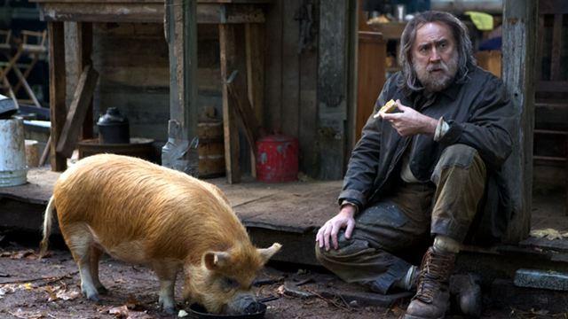 """Nicolas Cage und ein Schwein haben einen der besten Filme des Jahres gemacht: So könnt ihr """"Pig"""" nun doch im Kino sehen!"""