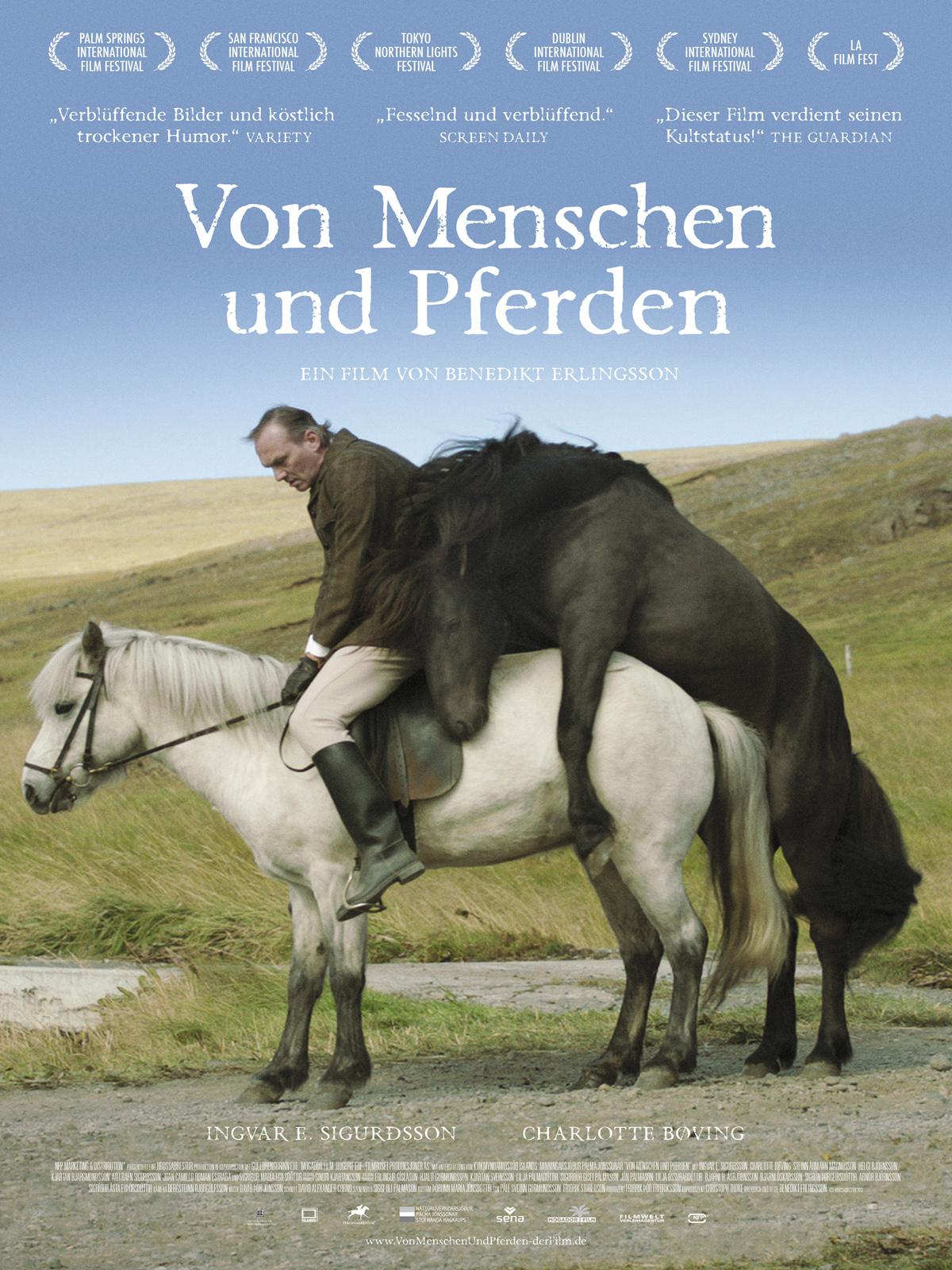 Fiken pferde Freies Tiergeschlecht,