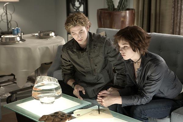 Twilight - Biss zum Morgengrauen : Bild Ashley Greene Khoury, Catherine Hardwicke, Kellan Lutz