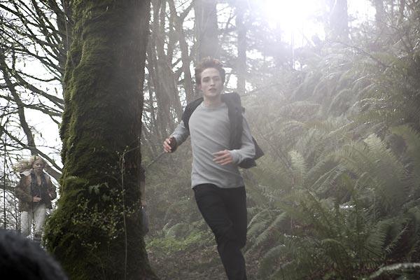 Twilight - Biss zum Morgengrauen : Bild Catherine Hardwicke, Robert Pattinson