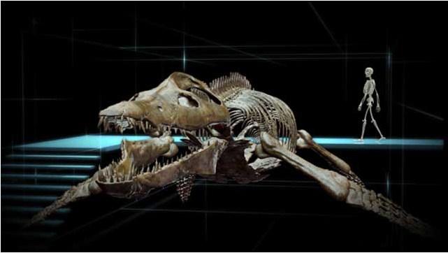 Sea Rex 3D: Reise in die Zeit der Dinosaurier