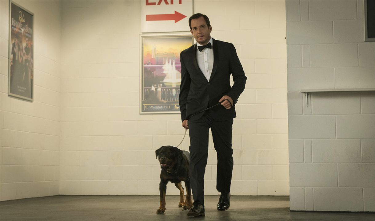 Show Dogs : Bild Will Arnett