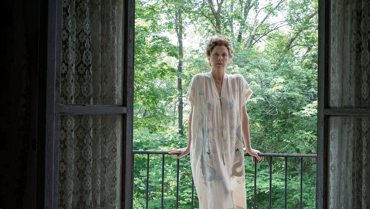 The Seagull - Eine unerhörte Liebe: Annette Bening