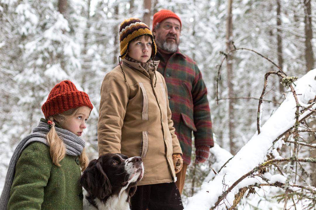 Weihnachten im Zaubereulenwald