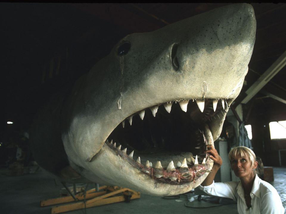 Die Freundin der Haie: Valerie Taylor